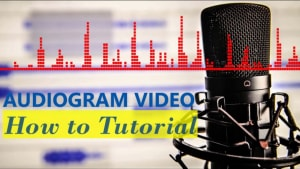 Audiogram video